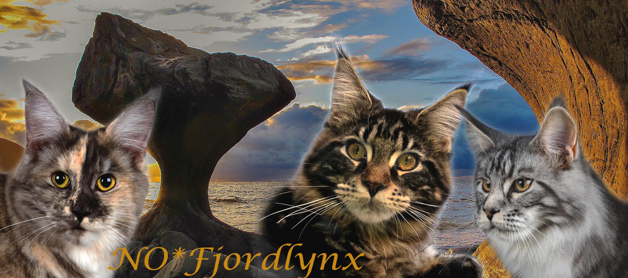 NO*Fjordlynx