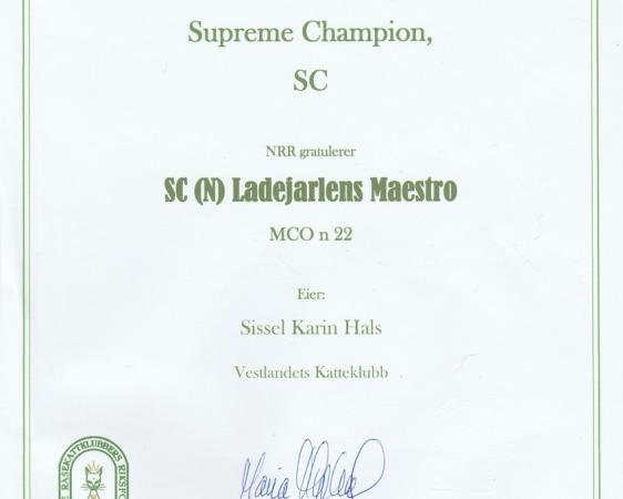 Diplom SC (N) Ladejarlen Maestro
